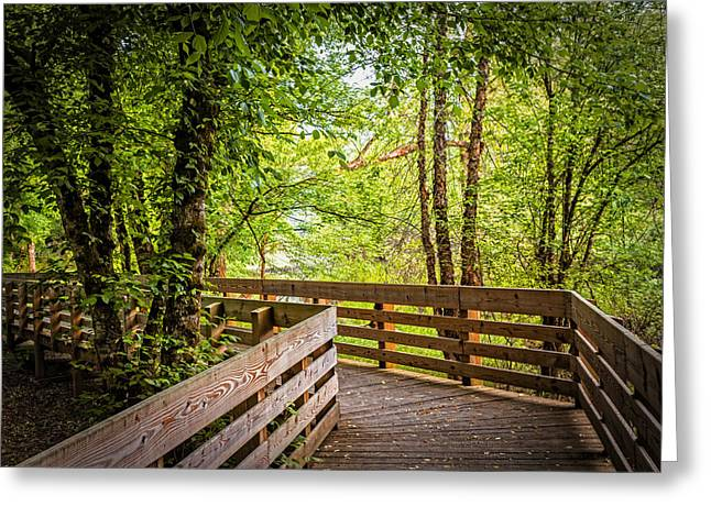 Roadway Greeting Cards - Enchanted Walk Greeting Card by Debra and Dave Vanderlaan