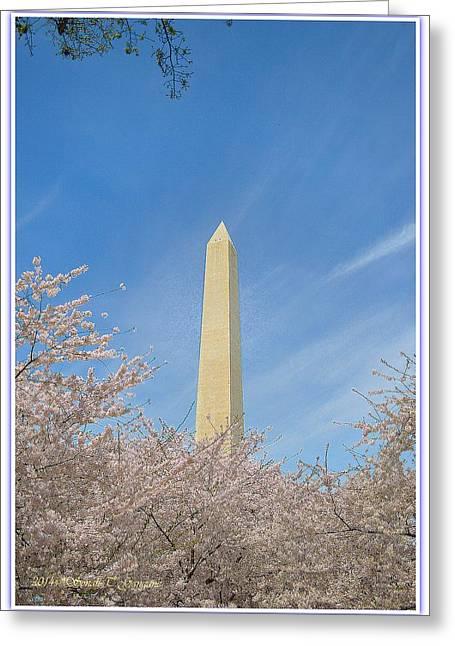 Limited Vision Greeting Cards - Enchanting Spring in Washington Greeting Card by Sonali Gangane
