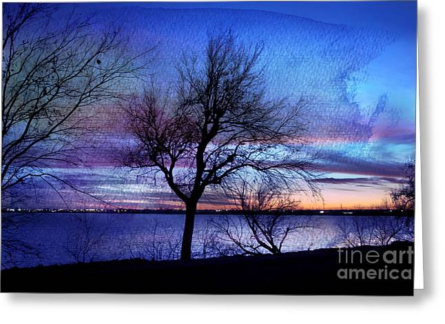 Bare Trees Greeting Cards - End of Day Greeting Card by Betty LaRue