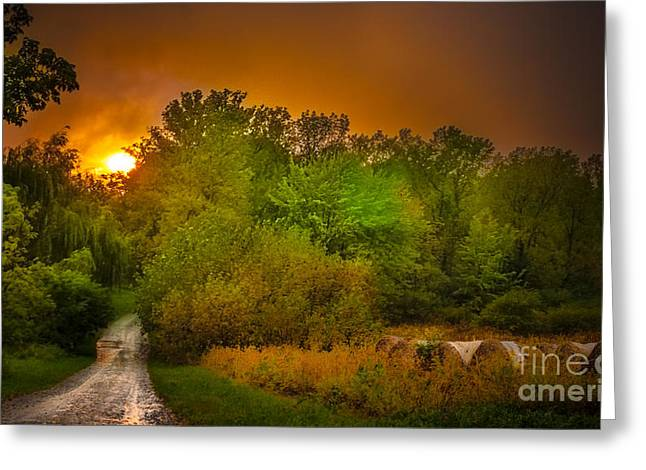 Fingerlakes Greeting Cards - End Of Days Greeting Card by Ken Marsh