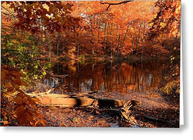 Autumn Art Greeting Cards - End Of Path Greeting Card by Lourry Legarde