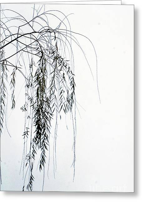 Willow Lake Greeting Cards - End Of Season Greeting Card by Skip Willits