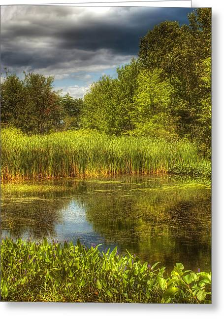 Summer Scene Greeting Cards - End of Summer Greeting Card by Joann Vitali