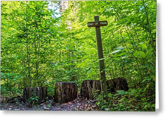 Rochester Artist Greeting Cards - End of Trail Greeting Card by Tim Buisman