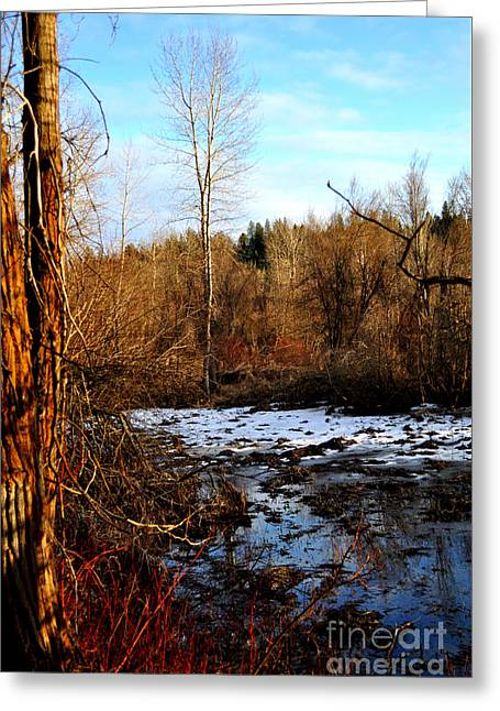Spokane Greeting Cards - End of Winter Greeting Card by Ana Lusi