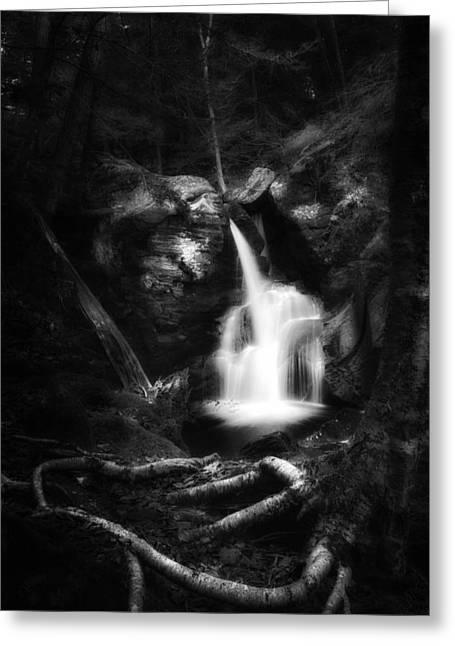 Falling Water Greeting Cards - Enders Falls Black and White Greeting Card by Bill  Wakeley