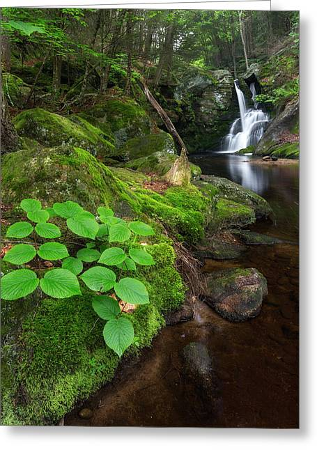 Ethereal Waterfalls Greeting Cards - Enders Falls Green Greeting Card by Bill  Wakeley