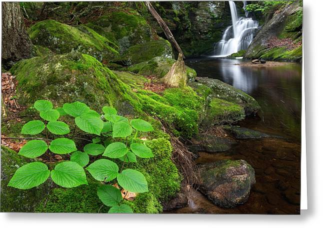 Ethereal Waterfalls Greeting Cards - Enders Falls Green Square Greeting Card by Bill  Wakeley