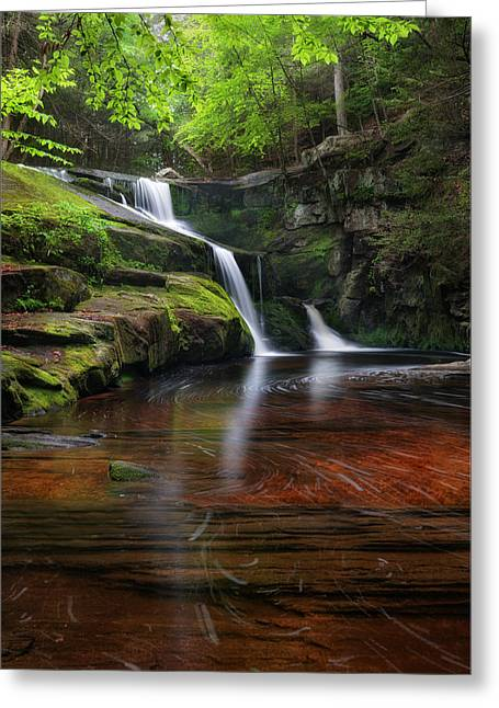 Moss Greeting Cards - Enders Falls Portrait Greeting Card by Bill  Wakeley