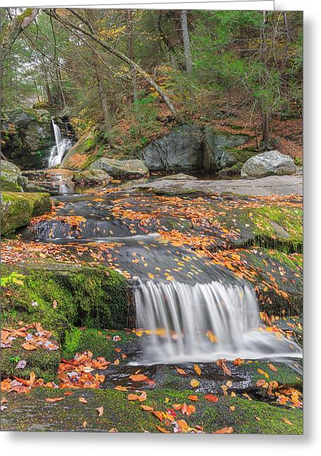Autumn Landscapes Greeting Cards - Enders Portrait Greeting Card by Bill  Wakeley