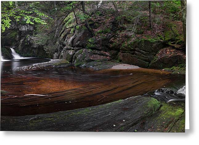 Ethereal Waterfalls Greeting Cards - Enders State Forest Panorama Greeting Card by Bill  Wakeley