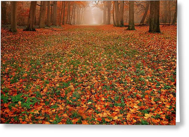 Endless Autumn Greeting Card by Photodream Art