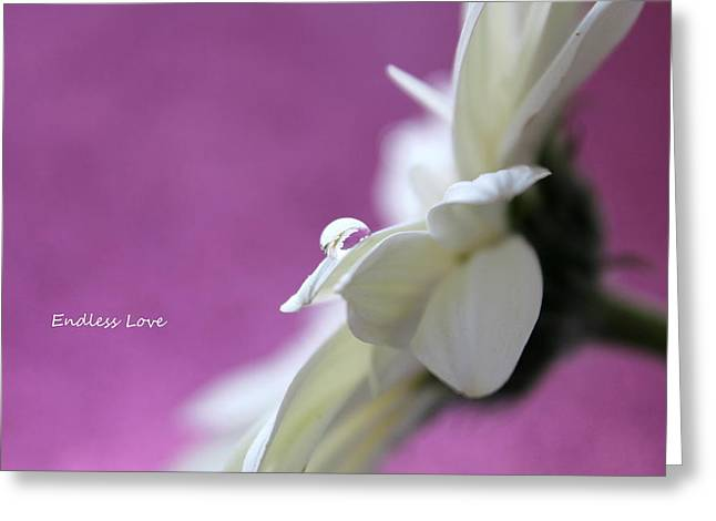 Endless Love Greeting Card by Krissy Katsimbras