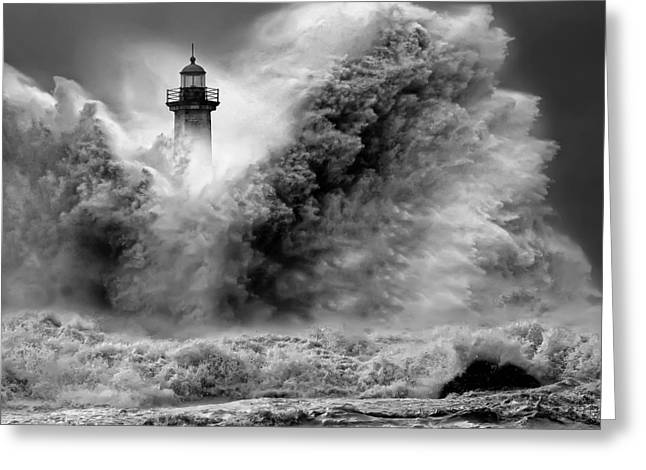 Black And White Photos Pyrography Greeting Cards - Enduring the Elements BW Greeting Card by Veselin Malinov