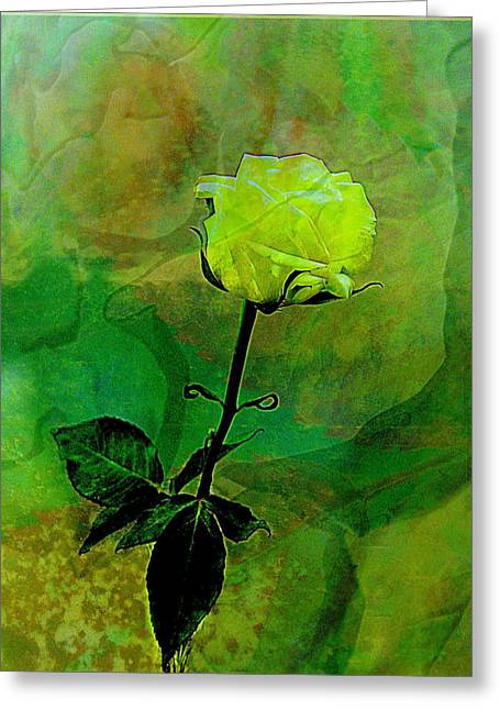 Enduring Yellow Rose Greeting Card by Shirley Sirois