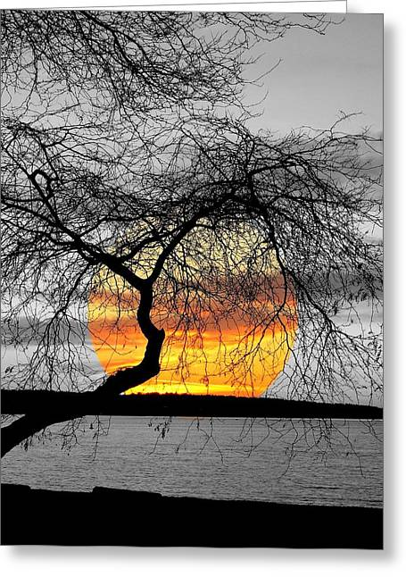 Sunset Framed Prints Greeting Cards - English Bay Sunset Greeting Card by Brian Chase