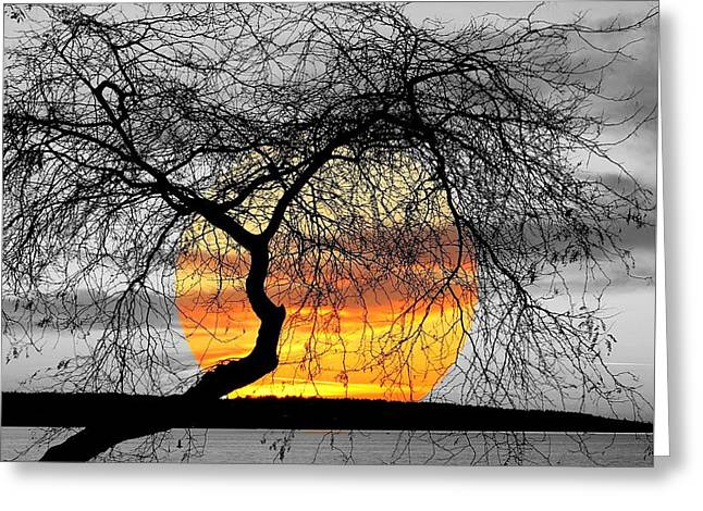 English Bay Sunset Greeting Card by Brian Chase