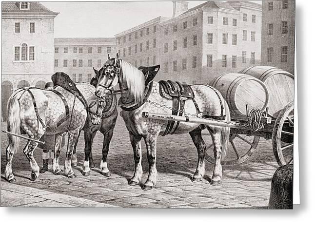 Farm Drawings Greeting Cards - English Farm Horses, 1823 Greeting Card by French School