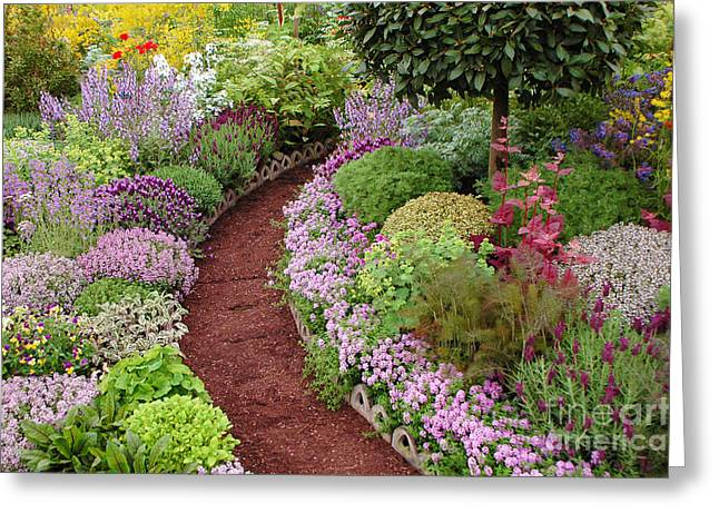 Mike Nellums Greeting Cards - English Garden Path Greeting Card by Mike Nellums