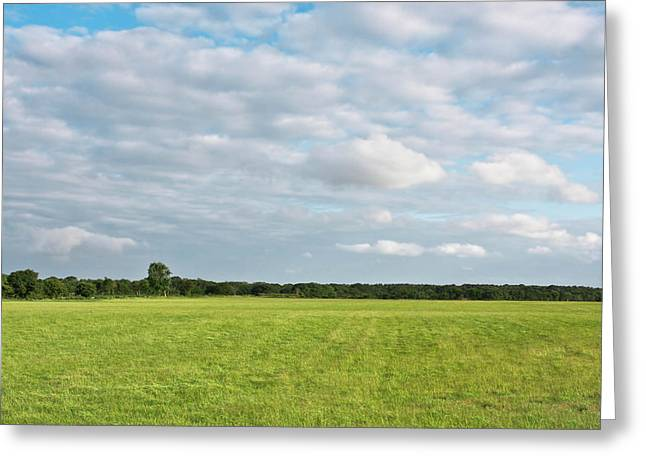 Fresh Green Greeting Cards - English landscape Greeting Card by Tom Gowanlock