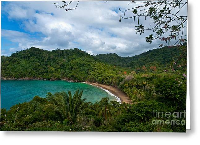 West Indies Greeting Cards - Englishmans Bay Greeting Card by Marion Galt