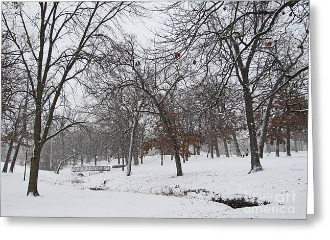 Snowstorm Prints Greeting Cards - Enjoy The Beauty of Nature Greeting Card by Adri Turner