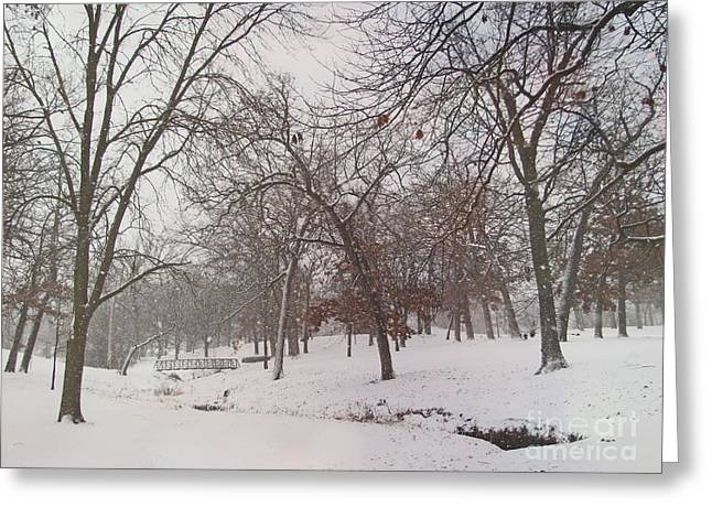 Snowstorm Prints Greeting Cards - Enjoy The Beauty of Nature Tone Enhancement Greeting Card by Adri Turner