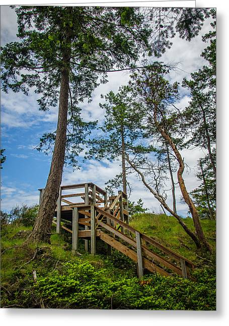 Take A View Greeting Cards - Enjoy the View Collection 10 Greeting Card by Roxy Hurtubise