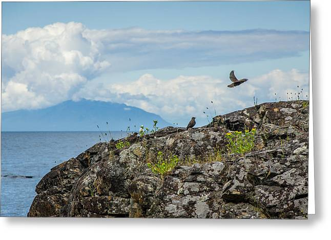 Take A View Greeting Cards - Enjoy the View Collection 15 Greeting Card by Roxy Hurtubise