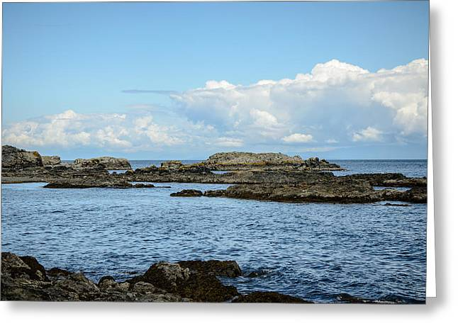 Take A View Greeting Cards - Enjoy the View Collection 18 Greeting Card by Roxy Hurtubise