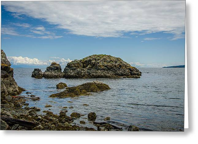 Take A View Greeting Cards - Enjoy the View Collection 19 Greeting Card by Roxy Hurtubise