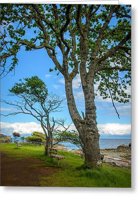Take A View Greeting Cards - Enjoy the View Collection 2 Greeting Card by Roxy Hurtubise