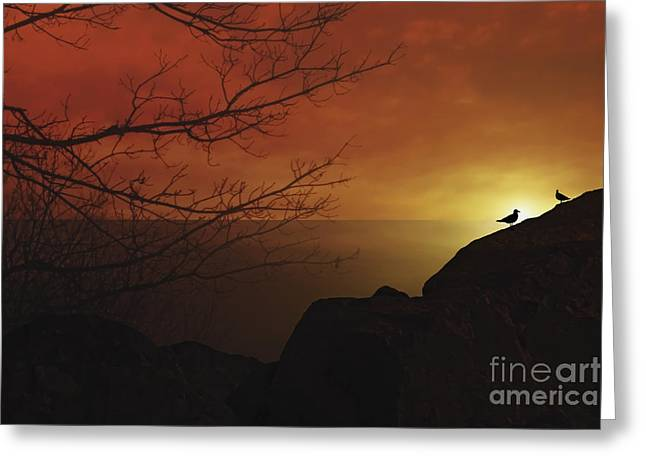 Sunset Seascape Greeting Cards - Enjoying The Sunset Greeting Card by Tom York Images