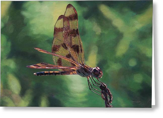 Dragonflies Pastels Greeting Cards - Enter The Dragon Greeting Card by Christopher Reid