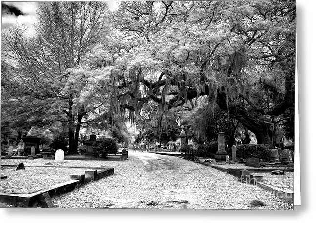 Historic Cemetery Greeting Cards - Enter the Resting Place Greeting Card by John Rizzuto