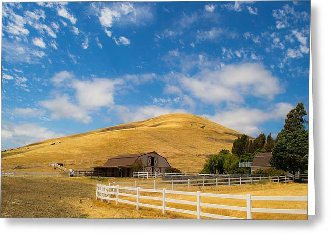 Red Roofed Barn Greeting Cards - Entering the Napa valley Greeting Card by Rima Biswas