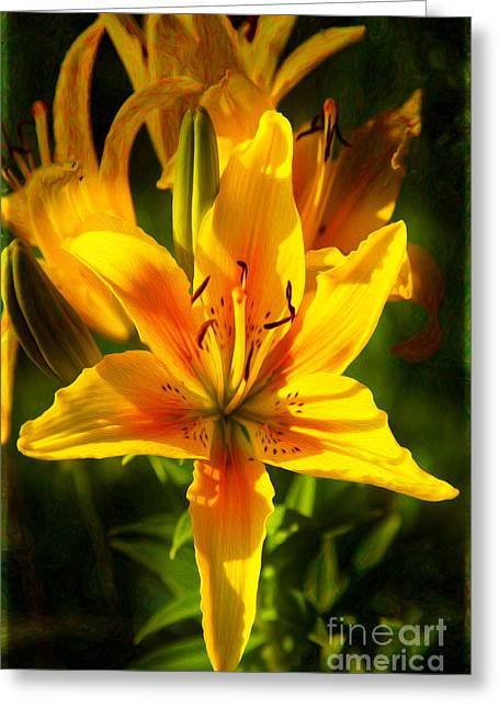 Enticing Bloom Of Yellow And Orange Lilies Garden Art By Omaste  Greeting Card by Omaste Witkowski