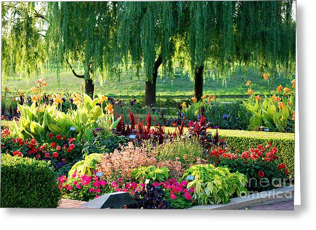 Chicago Botanic Garden Greeting Cards - Entrance Garden Greeting Card by Nancy Mueller