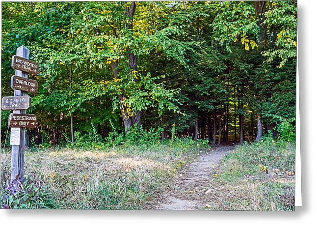 Rochester Artist Greeting Cards - Entrance Gosnell Big Woods Greeting Card by Tim Buisman