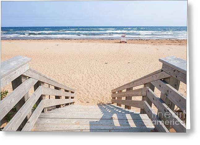 Sunny Beach Waves Greeting Cards - Entrance to Atlantic beach Greeting Card by Elena Elisseeva