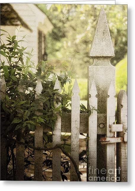 Painted Garden Gate Greeting Cards - Entwined Greeting Card by Margie Hurwich