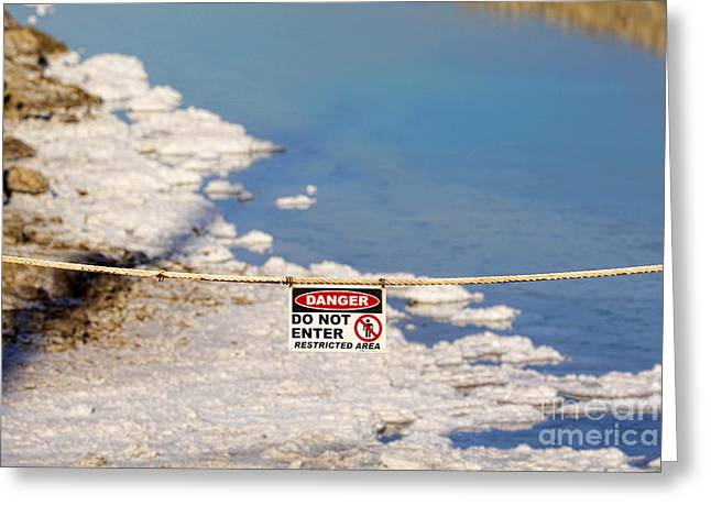 Environmental Disaster By Diana Sainz Greeting Card by Diana Sainz