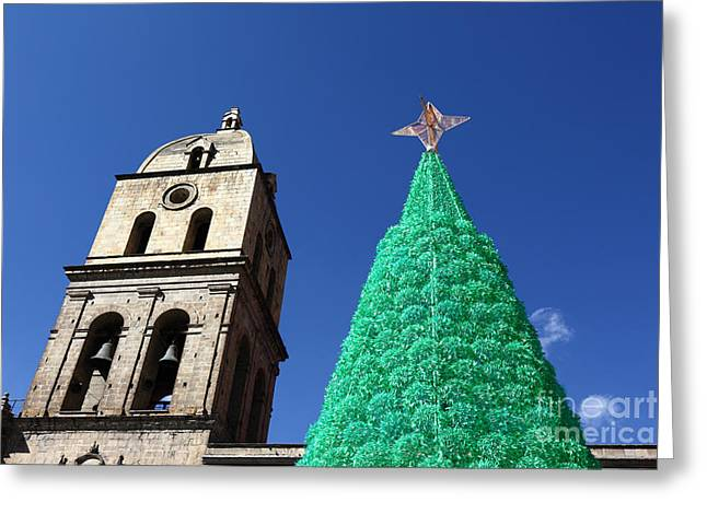 Tarjetas Greeting Cards - Environmentally Friendly Christmas Tree Greeting Card by James Brunker