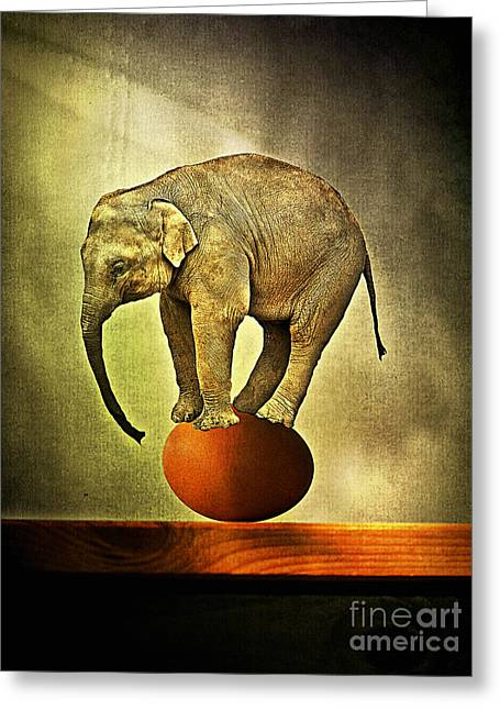 Elephants Pyrography Greeting Cards - Equilibrium II Greeting Card by Binka Kirova