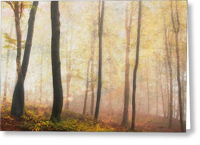 Forest Of Equilibrium Greeting Cards - Equilibrium Of The Forest In The Mist Greeting Card by Georgiana Romanovna