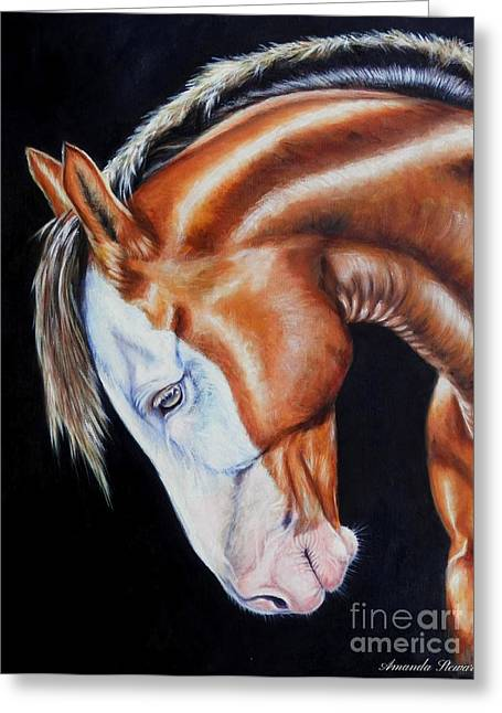 Hores Greeting Cards - Equine Elegance Greeting Card by Amanda  Stewart