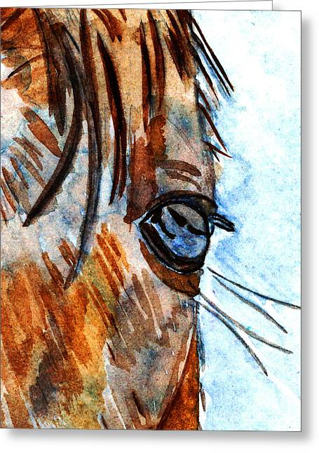 Veterinarian Greeting Cards - Equine Reflection Greeting Card by Elizabeth Briggs