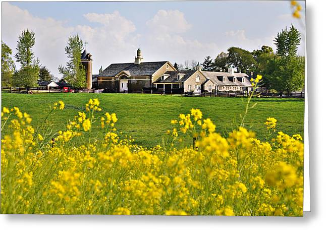 Erdenheim Farm Greeting Cards - Erdenheim Farm in April Greeting Card by Bill Cannon