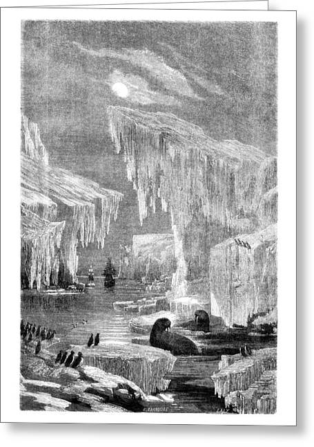 Seal Drawings Greeting Cards - Erebus and Terror in the Ice 1866 Greeting Card by E Grandsire