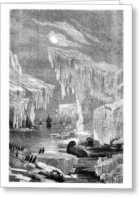 Winter Prints Drawings Greeting Cards - Erebus and Terror in the Ice 1866 Greeting Card by E Grandsire